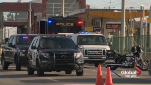 Woman hit and killed by CTrain at Whitehorn LRT Station was using cellphone: Calgary police